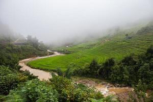 rio correndo por colinas com campos de arroz