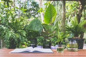 livro na mesa, fundo da natureza