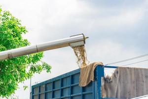colheitadeira em ação no campo de trigo foto