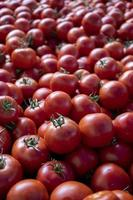 tomates à venda em um mercado