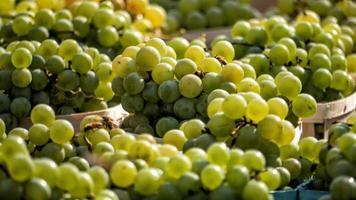 close up de uvas verdes em um mercado foto