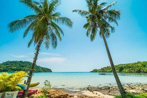 bela praia tropical foto