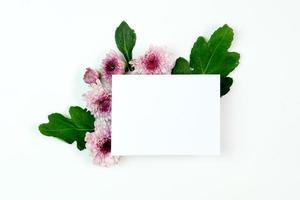 papel em branco com flores de aster