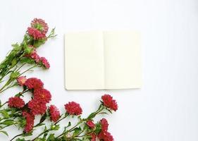 flor de áster e caderno em branco sobre fundo branco foto