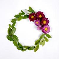 coroa de flores de áster foto