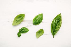 folhas de manjericão fresco foto