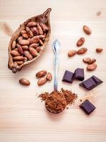 grãos de cacau e chocolate foto