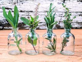 garrafas de vidro com ervas frescas