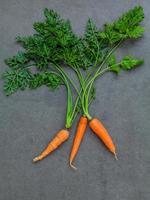 cacho fresco de cenouras foto