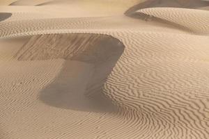 bela duna de areia no deserto de thar, jaisalmer, rajasthan, índia foto