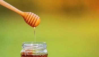 mel escorrendo da concha de mel em fundo natural