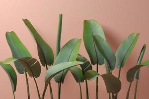 folhas de bananeira em um fundo rosa na ilustração 3D foto