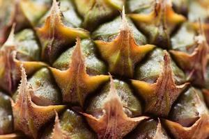 foto de quadro completo de um abacaxi