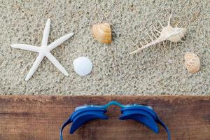 óculos de natação e conchas foto