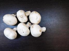 seis cogumelos brancos sobre um fundo escuro de mesa de madeira foto