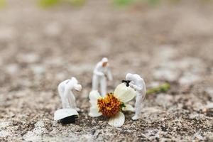 polícia em miniatura e detetive encontrando provas em uma flor na cena do crime foto