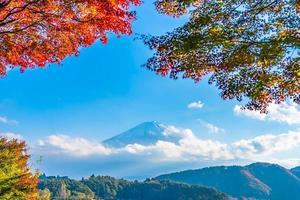 mt. Fuji com árvores de bordo em Yamanashi, Japão foto
