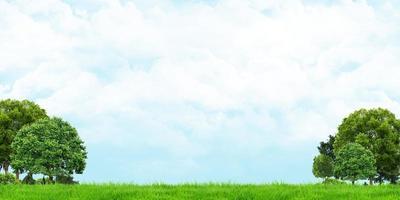 Ilustração 3D de grama e árvores com vista de céu nublado foto