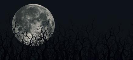 assustadoras ilustrações em 3D de montanhas panorâmicas, árvores e lua foto