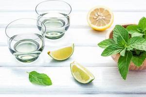 ingredientes da bebida mojito foto