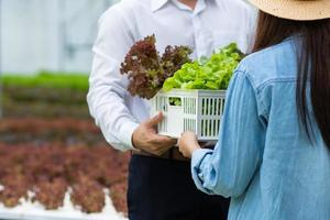 homem e mulher segurando uma caixa de legumes em uma estufa foto