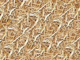 palha seca para fundo ou textura foto