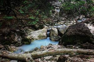 paisagem de floresta com riacho passando por rochas em um pequeno lago foto