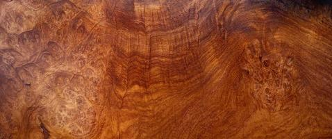 fundo de textura de madeira natural burl foto