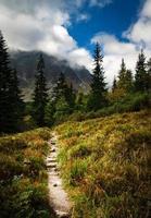 trilha de caminhada com vista para a montanha