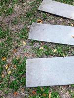 passarela de pedra sinuosa no jardim