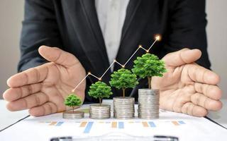 árvores verdes crescendo em moedas aumentam, conceito de crescimento de negócios foto