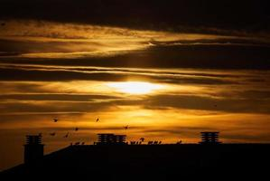 silhueta de edifícios sob céu nublado durante a hora dourada