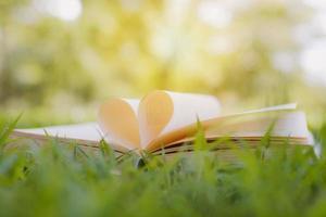 livro aberto com formato de coração na grama verde do parque