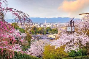 horizonte da cidade de kyoto com sakura