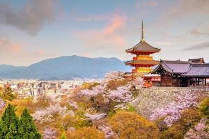 templo kiyomizu-dera e estação da flor de cerejeira na primavera em kyoto
