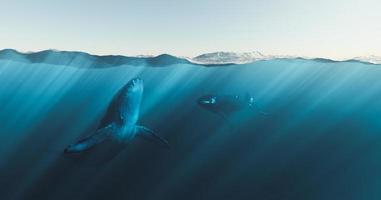 baleias subaquáticas sob o mar emergindo, renderização em 3D foto