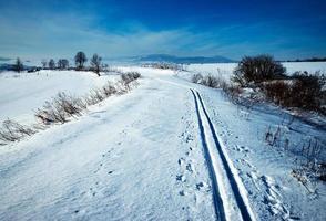 paisagem ensolarada de inverno foto