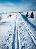 longa trilha de cross-country até o horizonte foto