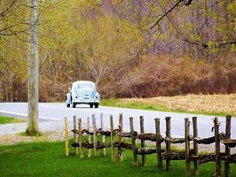 nós tiramos nossos lindos carros antigos foto