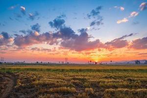 pôr do sol sobre um campo foto