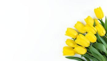 buquê de tulipas amarelas em fundo branco com espaço de cópia foto