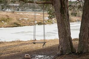 balanço de madeira em um galho de árvore na primavera com um rio gelado ao fundo foto