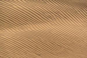 bela duna de areia no deserto de thar, jaisalmer, rajasthan, india. foto