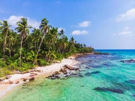 vista aérea linda praia e mar com coqueiro