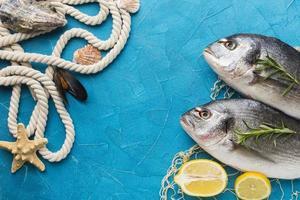 Arranjo de peixes com vista de cima da corda