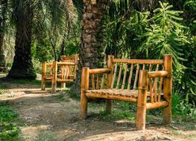 bancos de bambu em um parque foto