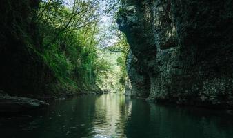 riacho em uma floresta escura foto