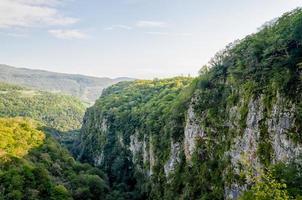montanhas com árvores verdes foto