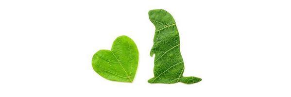a silhueta do animal é cortada de folhagem verde em um fundo branco