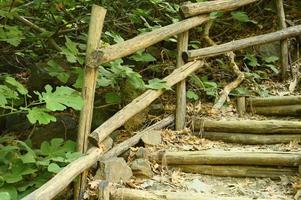 escada de madeira caseira antiga que percorre rochas em um desfiladeiro na montanha foto